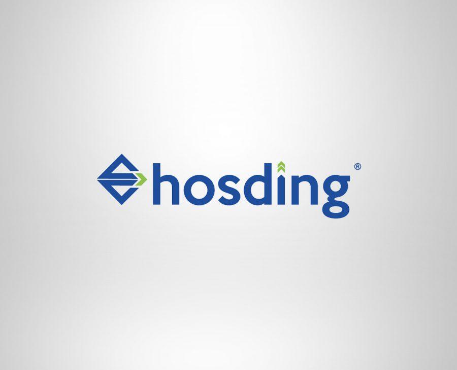 Hosding Logo Çalışması